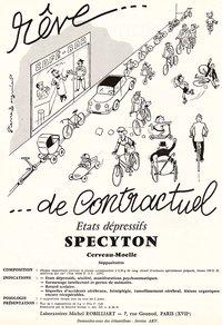 specyton26